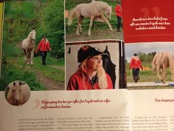 Dansa med hästar